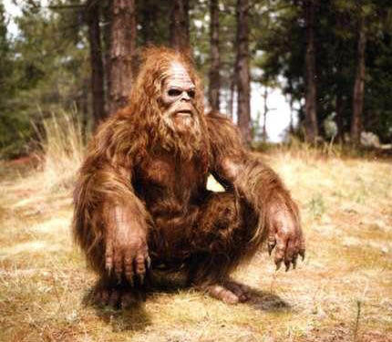 bigfoot_squat